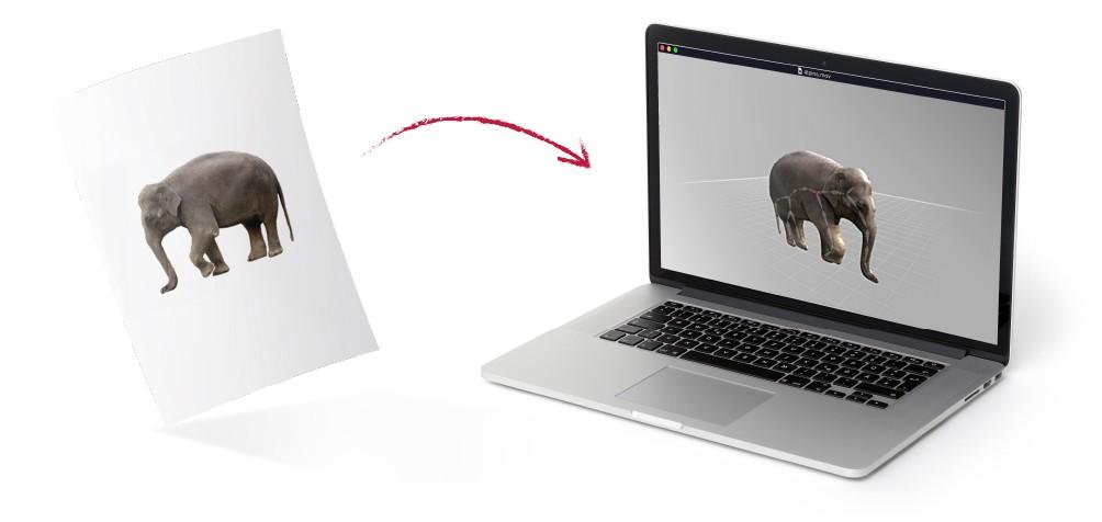 imagem-elefante